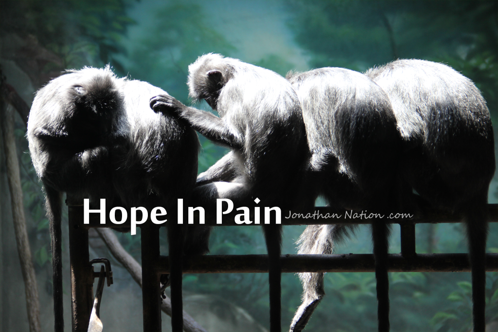 Hope In Pain