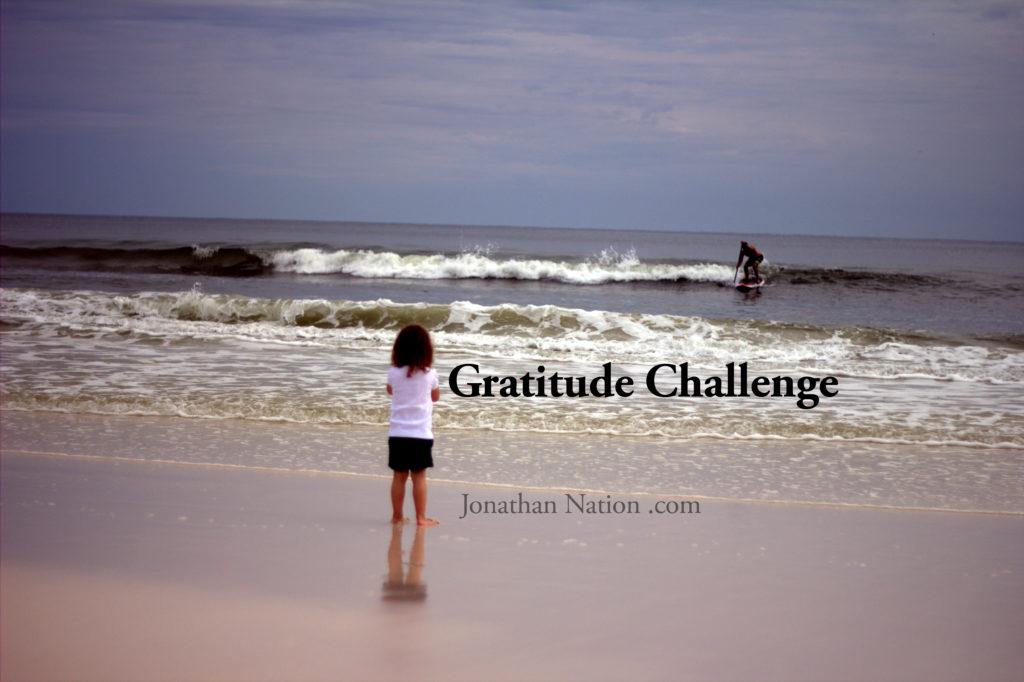 Gratitude Challenge 2014